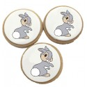 Biscuits Anniversaire Petit Lapin